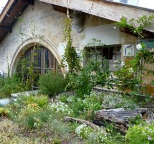 Le toit végétalisé de la REcyclerie.  © Annie Welter